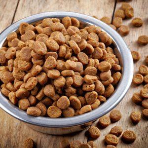 Comida seca para perro