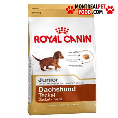 royal_canin_puppy_dachshund