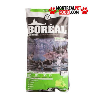 boreal_proper_dog_ocean_fish