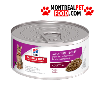 science_diet_canned_cat_beef_entree