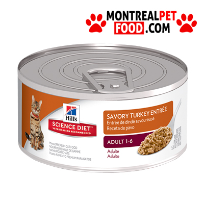 Canned Food Diet For Dogs